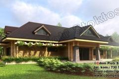 nowoczesny-dom-z-bali-z-ogrodem-zimowym-9